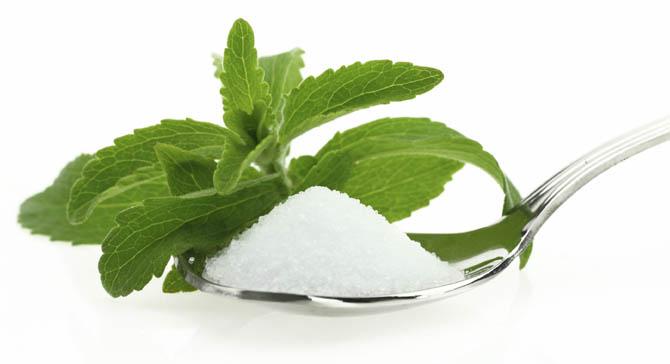 Stewia jako remedium na otyłość - relacja z konferencji Stevia Tasteful 2014